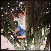 josh in tree